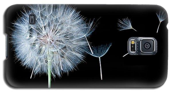 Dandelion Dreaming Galaxy S5 Case