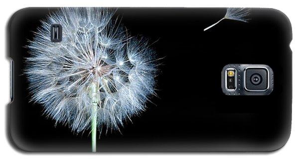 Dandelion Dreams Galaxy S5 Case