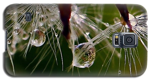 Dandelion Droplets Galaxy S5 Case