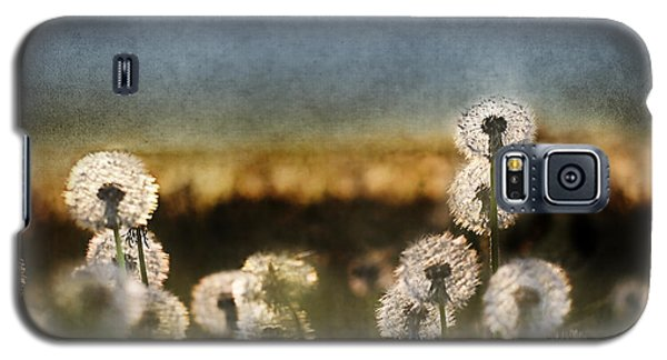 Dandelion Dusk Galaxy S5 Case