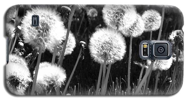 Dandelion Group Galaxy S5 Case