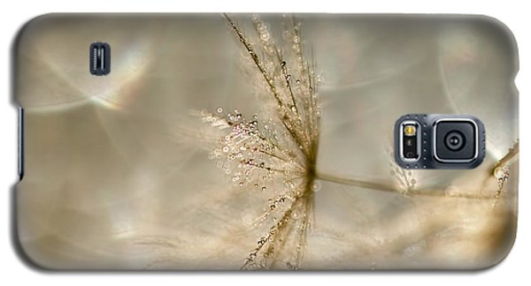 Dandelion Heaven Galaxy S5 Case by Peggy Collins