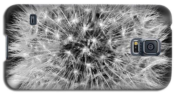 Dandelion Nebula Galaxy S5 Case