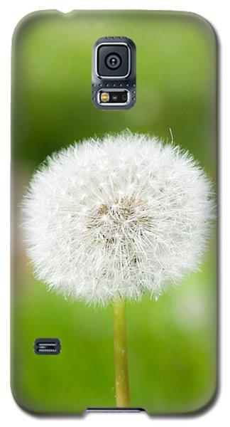 Dandelion Puffball Galaxy S5 Case