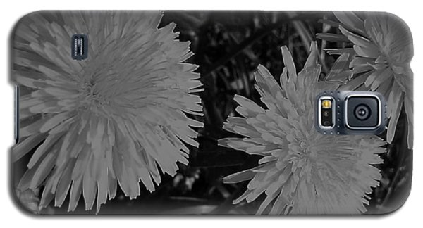 Galaxy S5 Case featuring the photograph Dandelion Weeds? B/w by Martin Howard