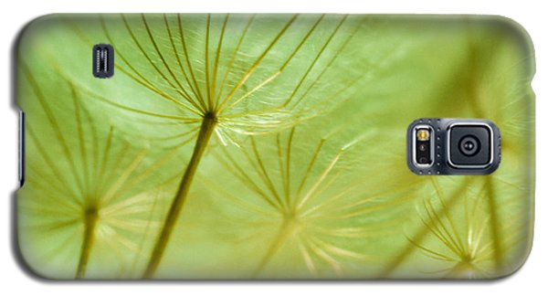 Dandelions 18 Galaxy S5 Case by Iris Greenwell