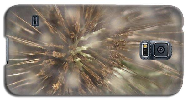 Dandillion Seed Head Galaxy S5 Case