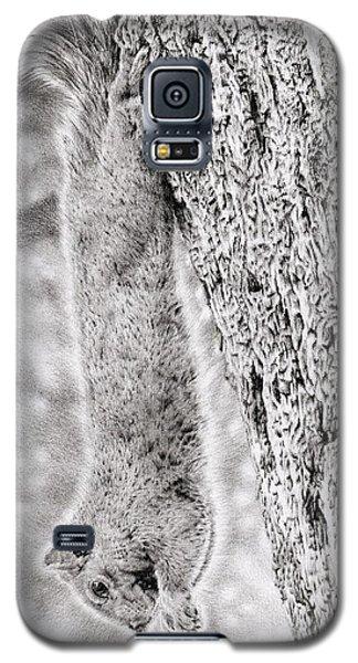 Dangling Squirrel Galaxy S5 Case