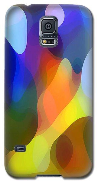 Dappled Light Galaxy S5 Case