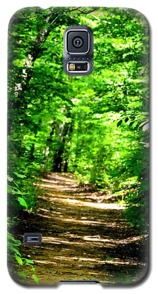 Dappled Sunlit Path In The Forest Galaxy S5 Case