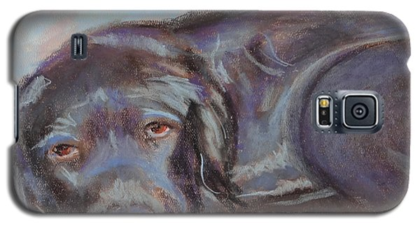 Dark Chocolate Galaxy S5 Case by Carol Berning