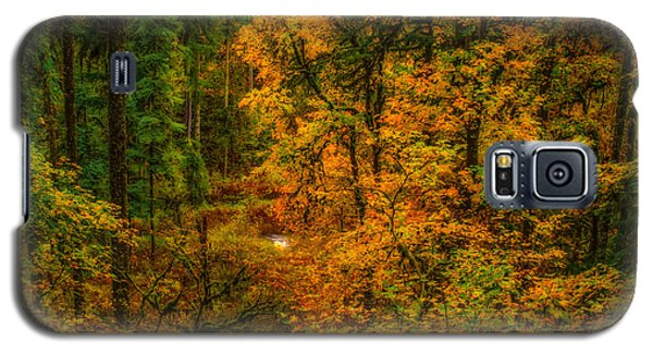 Galaxy S5 Case featuring the photograph Dark Forest by Dennis Bucklin