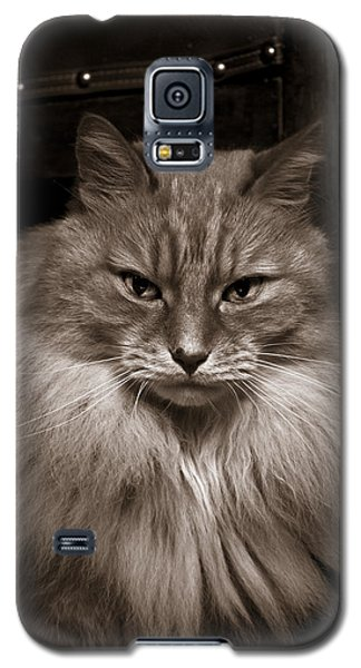 Dark Portrait Galaxy S5 Case