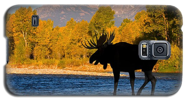 Galaxy S5 Case featuring the photograph Dark Side Moose                               by Aaron Whittemore
