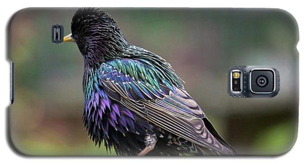 Darling Starling Galaxy S5 Case