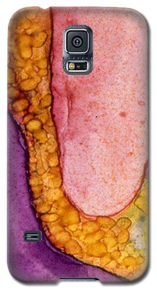 Date Night Galaxy S5 Case