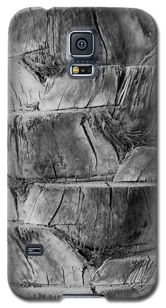 Date Palm Bark Galaxy S5 Case