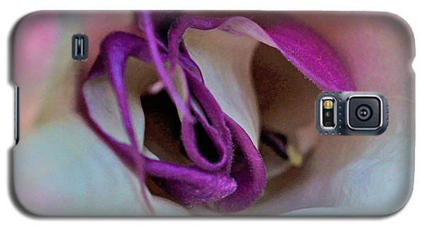 Galaxy S5 Case featuring the photograph Datura Squared by TK Goforth