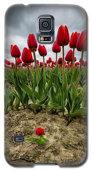 David Galaxy S5 Case by Ryan Manuel