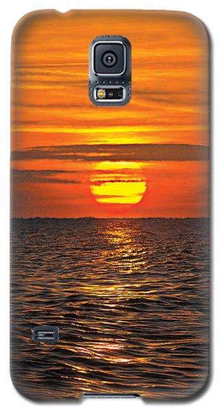 Galaxy S5 Case featuring the digital art Dawn Flight by David Davies