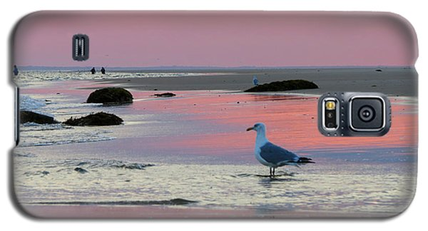Galaxy S5 Case featuring the photograph Dawn In Pink by Dianne Cowen