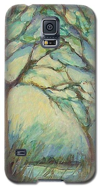 Dawn Galaxy S5 Case by Mary Wolf