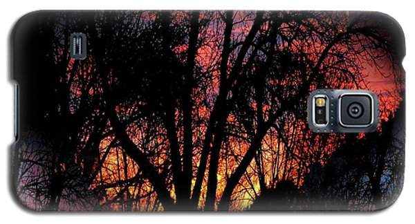 Sunrise - Dawn's Early Light Galaxy S5 Case by Luther Fine Art