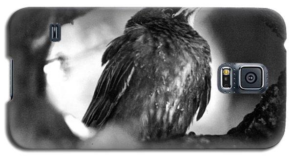 Dax's Bird Galaxy S5 Case