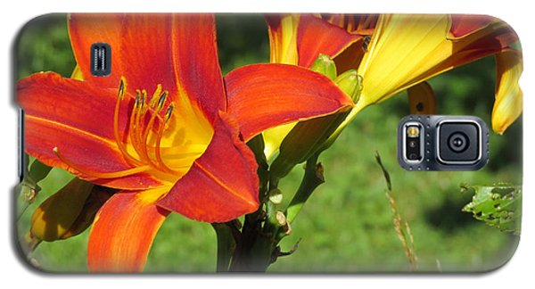 Day Lily 3 Galaxy S5 Case