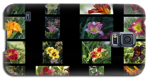 Galaxy S5 Case featuring the photograph Day Lily Collage by Yumi Johnson