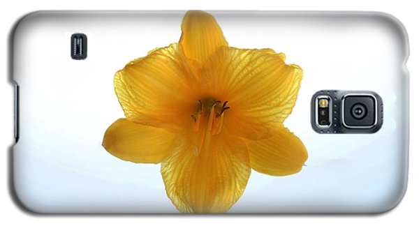 Day Lily Galaxy S5 Case by Richard Stephen