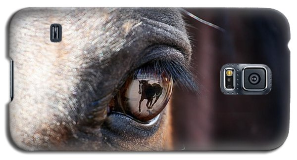 Daydream Of A Horse Galaxy S5 Case