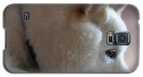 Daydreamer Galaxy S5 Case by Stuart Turnbull