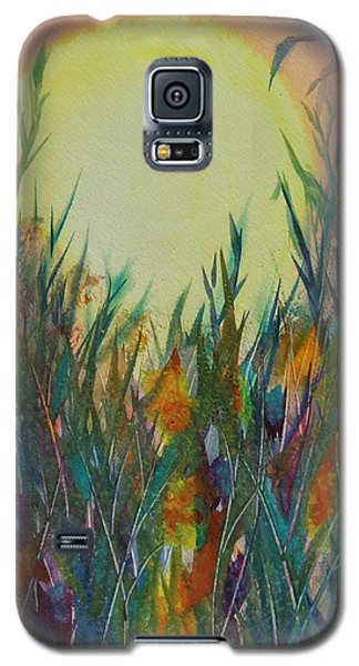 Daydreams Galaxy S5 Case