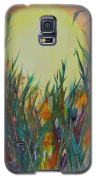 Daydreams Galaxy S5 Case