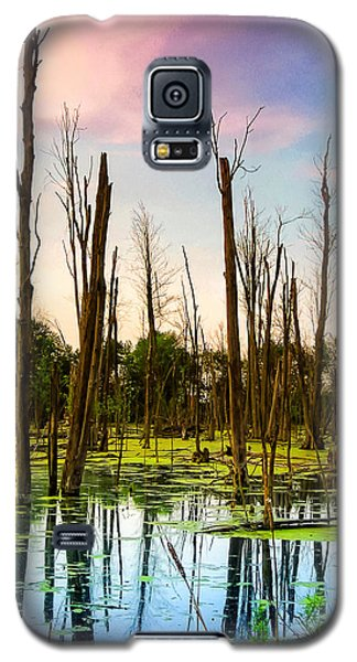 Daylight In The Swamp Galaxy S5 Case