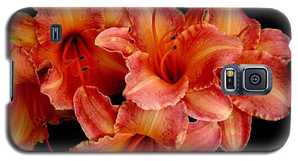 Galaxy S5 Case featuring the photograph Daylilies 1 by Rose Santuci-Sofranko