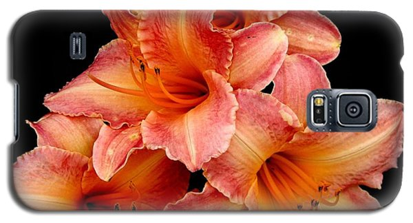 Galaxy S5 Case featuring the photograph Daylilies 2 by Rose Santuci-Sofranko