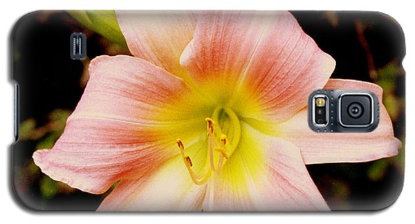 Galaxy S5 Case featuring the photograph Daylily by Tom Brickhouse