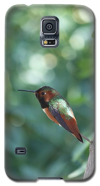 Galaxy S5 Case featuring the photograph Dazzling Gem by Amy Gallagher