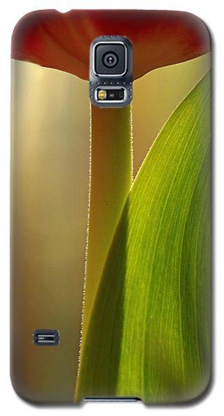 Vertical Tulip Galaxy S5 Case