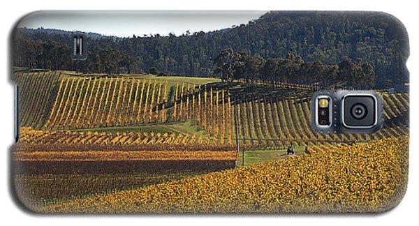 golden vines-Victoria-Australia Galaxy S5 Case