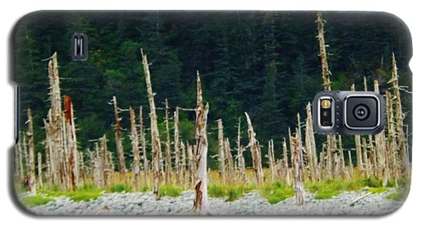 Galaxy S5 Case featuring the photograph Dead Forest Alaska by Brigitte Emme