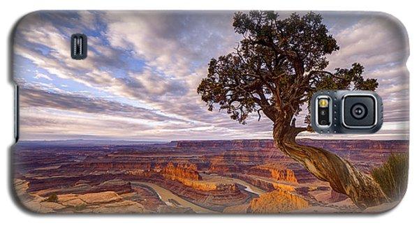 Dead Horse Point Sunrise Galaxy S5 Case