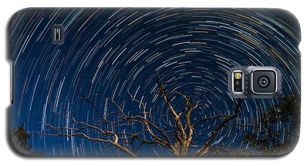 Dead Oak With Star Trails Galaxy S5 Case by Paul Freidlund