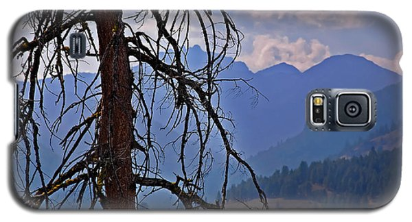 Galaxy S5 Case featuring the photograph Dead Tree Mountains Landscape by Valerie Garner