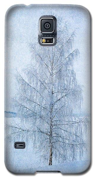 December Birch Galaxy S5 Case