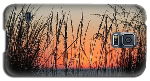 December Dawn Galaxy S5 Case