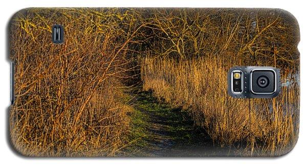 december light - Leif Sohlman Galaxy S5 Case by Leif Sohlman