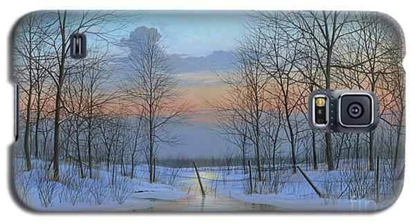December Solitude Galaxy S5 Case